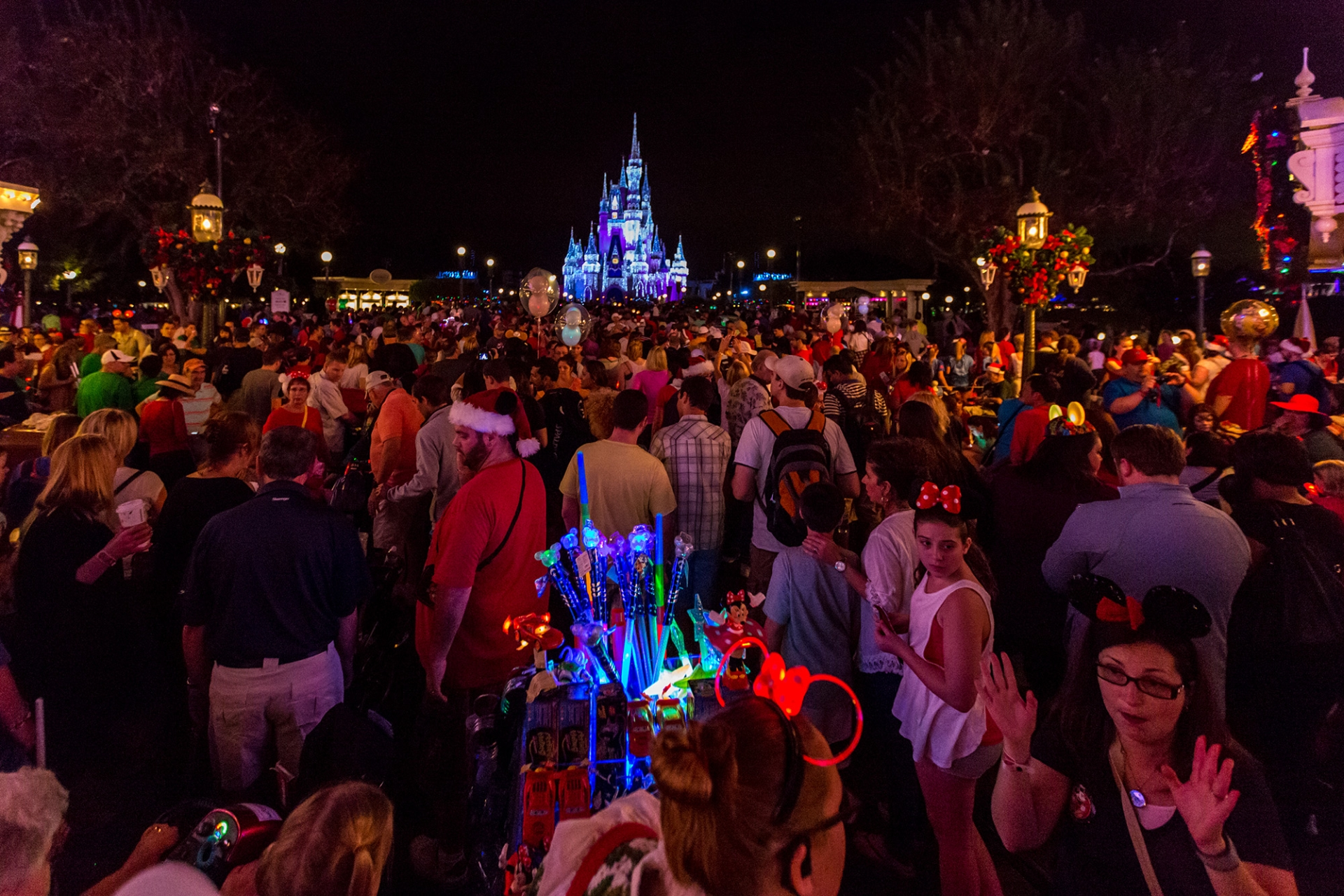 Mickey's Very Merry Christmas Party 2013 Mini Review and Pictures ...