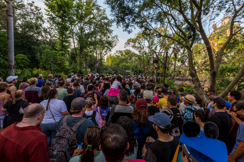 Image result for rope drop