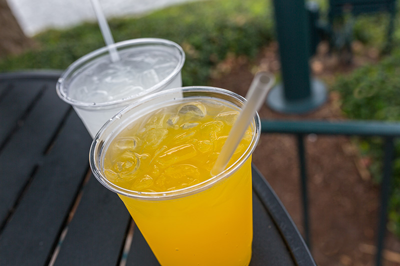 Kung Fu Punch China Epcot Food Wine Festival